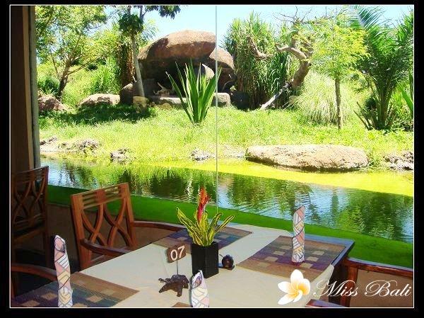 safari野生动物园--tsavo